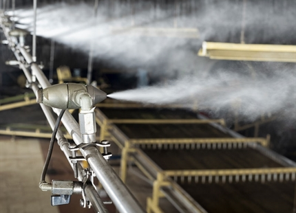 Humidifiers enhance fermentation at Bajrang Tea
